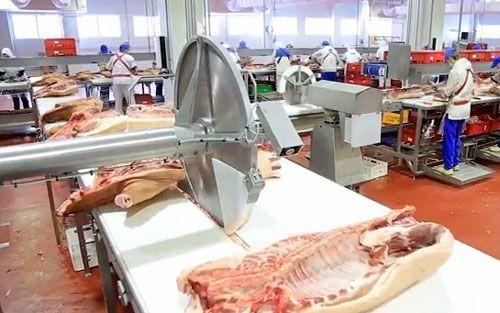 Агрохолдинг «ариант» продолжает совершенствовать свое мясное производство - «челябинская область»