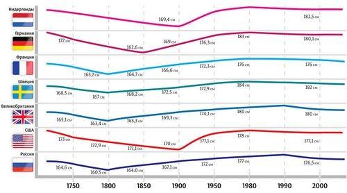 Акселерация и децелерация: как меняется наш рост от эпохи к эпохе