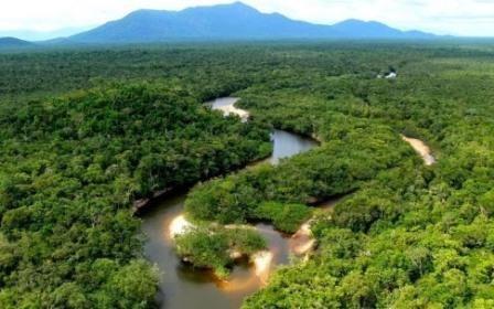 Амазония была обжита и плотно заселена задолго до колумба