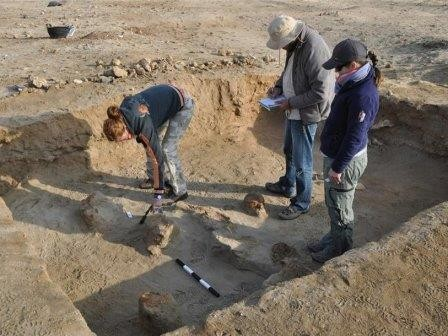 Археологи обнаружили кладбище домашних животных в египте