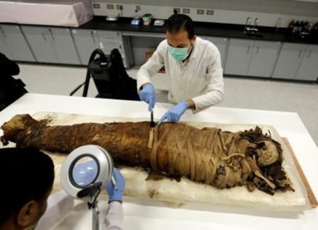 Археологи обнаружили в египте мумии писаря и рыбы