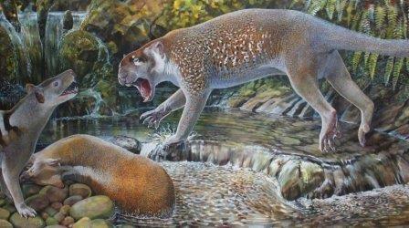 Австралийские палеонтологи нашли сумчатого льва – древолаза