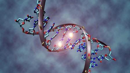 Биологи раскрыли тайны «темной материи» в днк