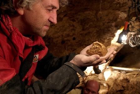 Черепа из атапуэрки проливают свет на эволюцию неандертальцев