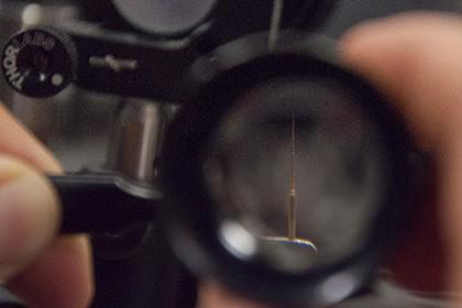 Чувствительность микроскопов увеличили лазерами в 20 раз