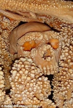 Древнейший неандерталец «ожил»