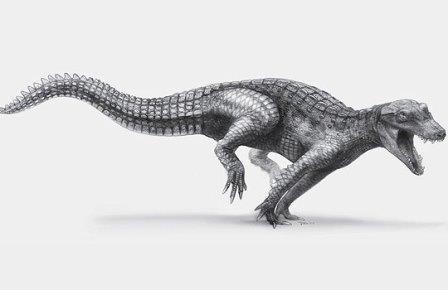 Древние крокодилы были очень заботливыми родителями