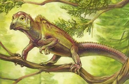 Древняя рептилия случайно предвосхитила птичий череп