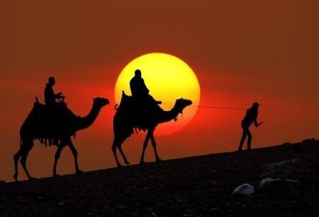 Египтолог объяснил загадку исчезновения 50-тысячной армии камбиса