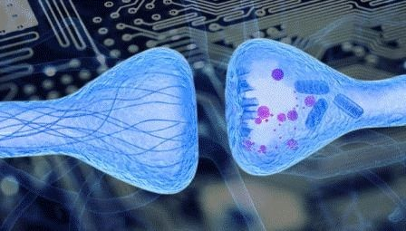 Физики создали первый искусственный аналог синапса нервных клеток