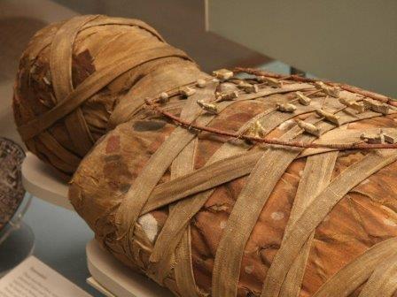 Генетики научились выделять днк из египетских мумий