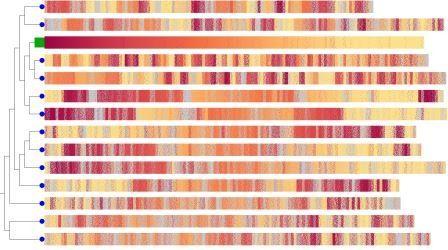 Генетики подтвердили взаимоусиление вредных мутаций