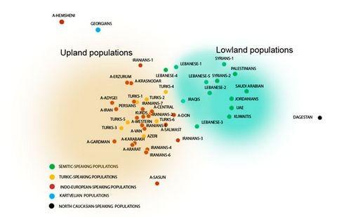 Генофонд передней азии: разница между равнинными и горными народами максимальна
