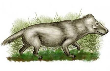 Глисты донимали предков млекопитающих ещё в пермском периоде