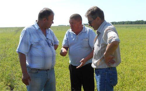 Как из развалившегося совхоза удалось создать процветающее хозяйство - «челябинская область»