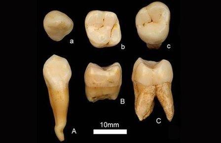 Китайские антропологи развенчали африканскую прародину человечества?