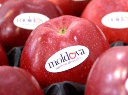 Квоты наэкспорт молдавских продуктов вес остаются непогашенными - «экономика»