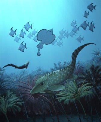 Массовые вымирания приводят к измельчанию позвоночных