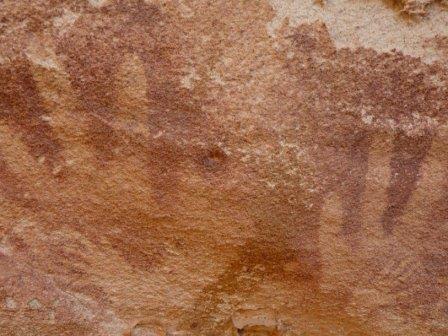 «Младенческие ладони» каменного века оказались лапками ящериц