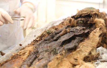 Мумия ребенка, найденная на ямале, относится к xiii веку н.э.