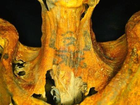 На египетской мумии обнаружены татуировки