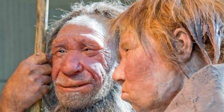 Неандертальцы были отдельным видом