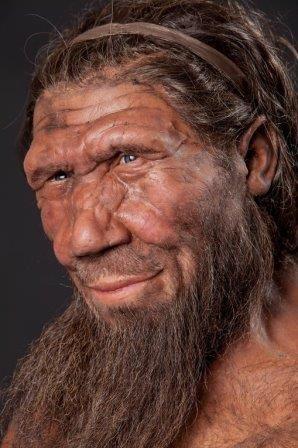 Неандертальцы помогли людям выжить на севере