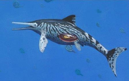 Обнаружен самый крупный скелет беременного ихтиозавра