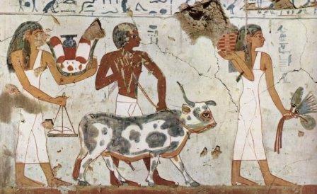 Одомашнивание животных усилило неравенство в древнем мире