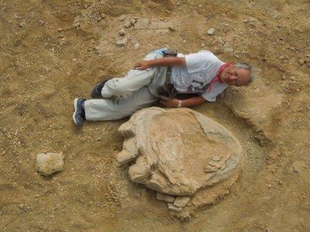 Огромный след динозавра найден в пустыне гоби