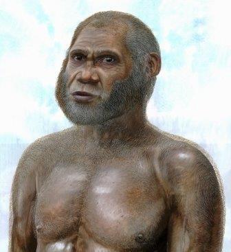 Открыт новый вид древних «карликов», которые могли бы дожить до наших дней