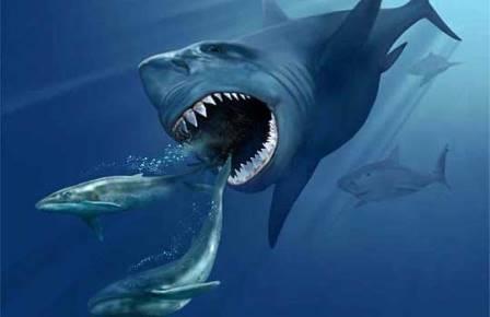 Открыто новое массовое вымирание морской фауны
