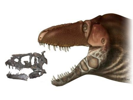Палеонтологи лишили тираннозавров губ