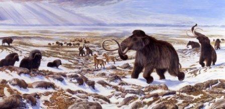 Палеонтологи нашли в новосибирской области место, где могли жить мамонты