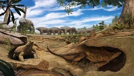 Палеонтологи пересмотрели функцию карапакса черепах