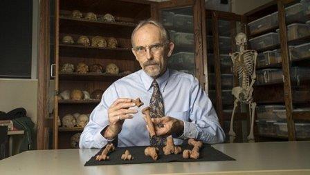 Палеонтологи выяснили, какой образ жизни вела «прамать» человечества люси