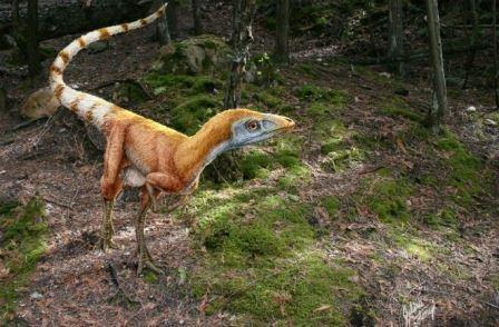 Пернатые динозавры юрского периода были свирепыми и… пушистыми?
