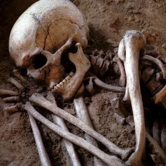 Первая крупномасштабная война произошла 13 тысяч лет назад