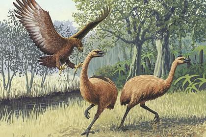 Первобытные люди оказались причастны к истреблению видов