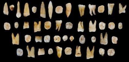 Первые люди проникли в китай уже 80 тысяч лет назад