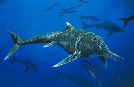 Пикирующий ихтиозавр сдался ученым через 65 лет