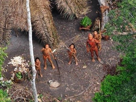 Представители изолированного племени вышли из бразильской сельвы