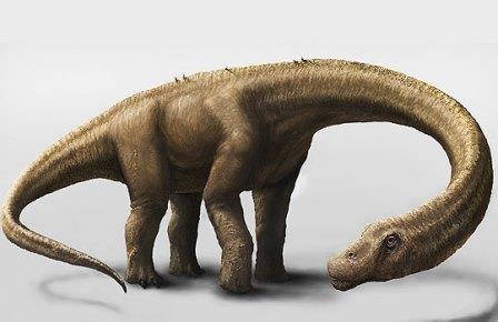 Самого крупного динозавра в мире нашли в аргентине