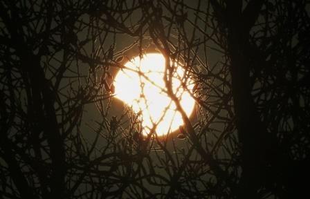 Солнечное затмение будет видно в россии с полудня до половины третьего 20 марта