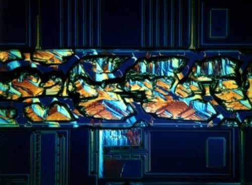 Создан первый квантовый микроскоп, использующий свойства запутанных фотонов
