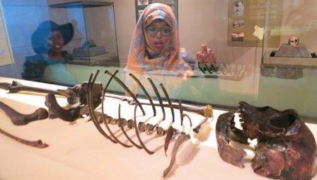 Ученые нашли новые доказательства «степного» происхождения человека