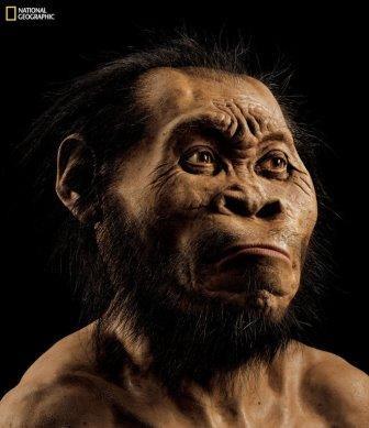 Ученые нашли следы «вулканического» происхождения интеллекта человека