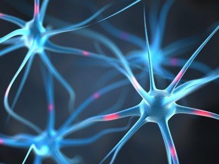 Ученые нашли способ избавиться от воспоминаний