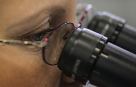 Ученые научились «находить» делокализованные электроны в молекулах