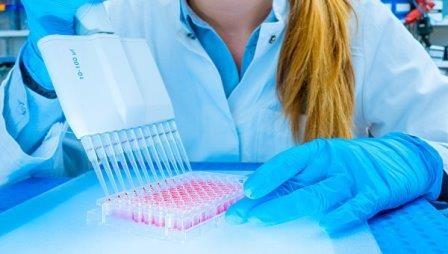 Ученые разгадали главную «женскую» загадку человеческого генома